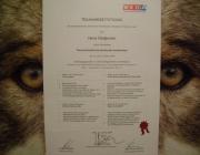 Tierbetreuung Stieglecker - Hundebetreuung Stieglecker