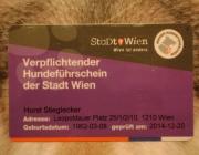 Verpflichtender Hundeführschein der Stadt Wien