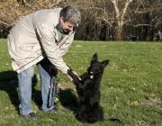 Hund - Mensch / Allmählich sah auch der Mensch, dass ihm dieses um seine Lager schleichende Tier Vorteile brachte, denn er warnte vor Gefahr, war ein guter Jäger und hütete anfangs eher zufälligerweise die anderen vom Menschen gefangenen Tiere.