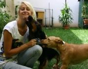 Hund - Mensch / Wenn ein Welpe in sein neues Zuhause einzieht, braucht er deshalb Aufmerksamkeit, Geduld und Konsequenz.
