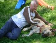 Hund - Mensch / Generell ist vor der Anschaffung des Hundes zu überlegen, welcher Hund in Frage kommt. Dabei ist daran zu denken, welcher Hund (Rasse) in die Wohn- und Lebensverhältnisse passt.