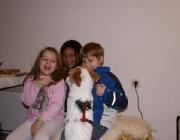 Hunde - Kinder / Man sollte einem Hund niemals zumuten, daß die Kinder mit ihm alles machen dürfen, was ihnen einfällt.